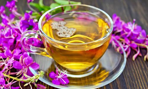 Иван-чай. Полезные свойства
