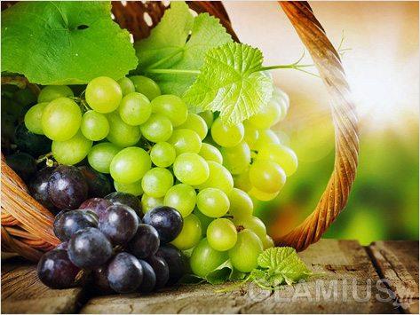 Можно ли виноград при беременности