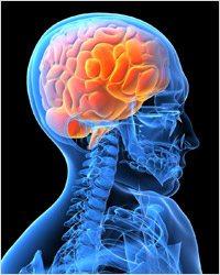 Питание для мозга: пища для ума