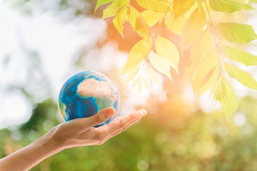 Топ-5 способов приучить детей помогать планете